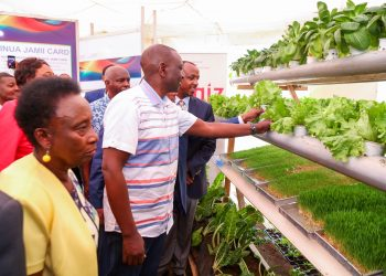 Kenya's Deputy President William Ruto during the International youth week in Makueni County. The county has enrolled 150 youths for hydroponics training to eradicate poverty.