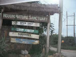 Picnic in Nguuni Nature Sanctuary- The Exchange