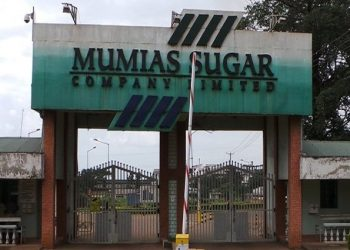 Mumias Sugar Company has reported a Ksh15.1 billion (US$150.8 million) loss for the year ended June 2018, sinking deeper into losses after recording a Ksh6.8 billion (US$67.9 million) loss the previous financial year. The miller has blamed the steep rise in loss mainly to steep increase in impairment charges to its plant and machinery and a cane shortage that led to closure of its factory.