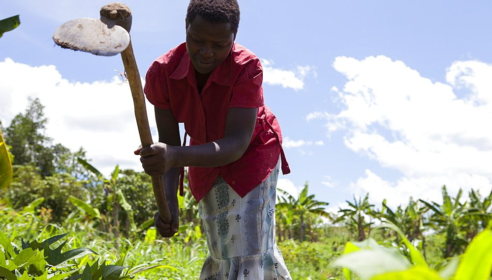 Norway WFP sign $3 million deal support Tanzania farmers - The Exchange www.exchange.co.tz